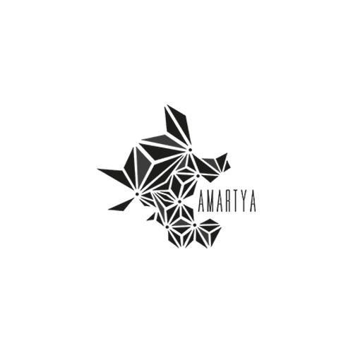website ontwikkeling Amartya? Peter Voets Zaandam