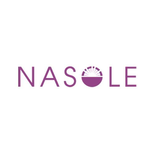 website ontwikkeling Praktijk Nasole? Peter Voets Zaandam